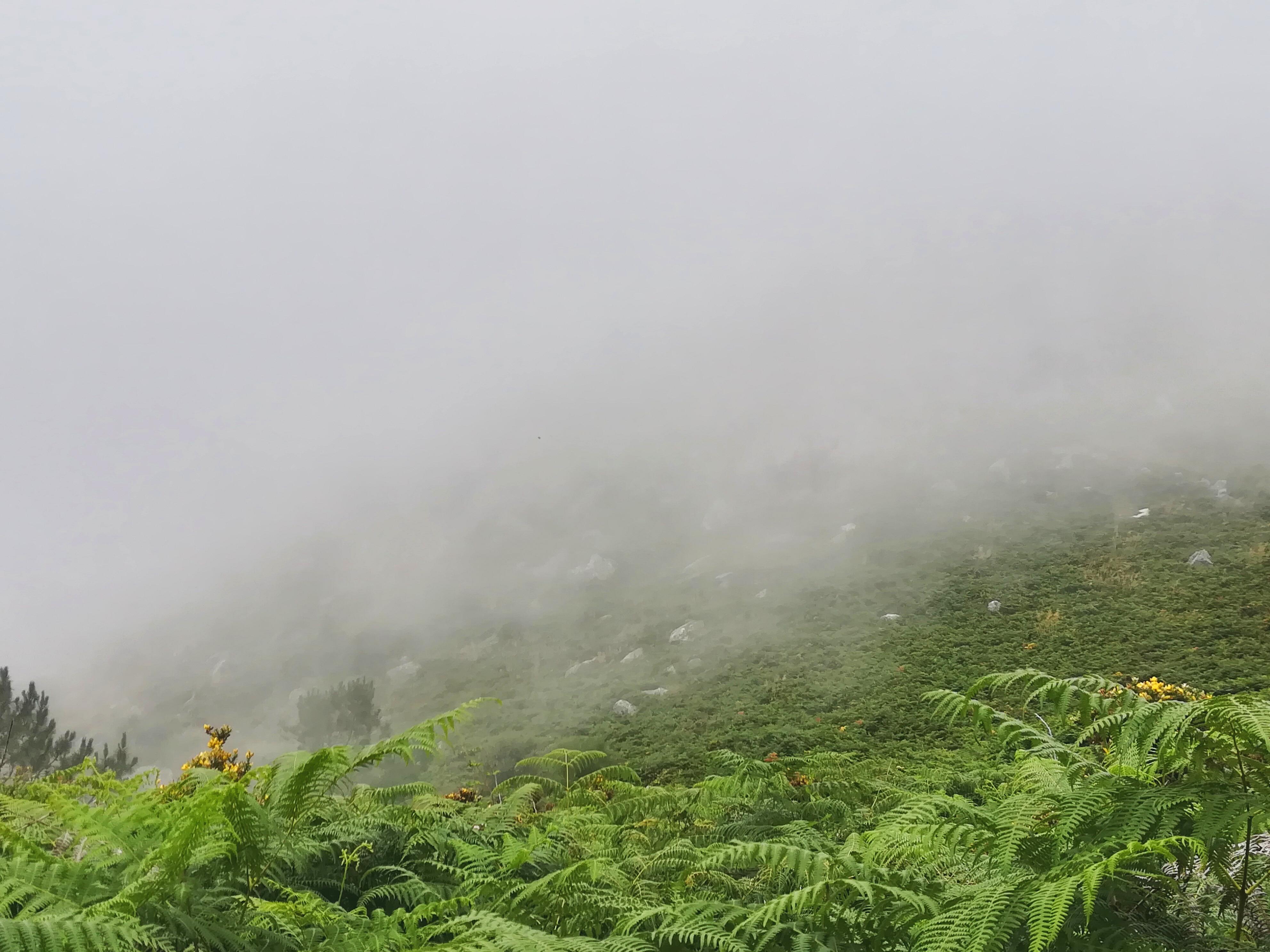 Senda Litoral - Cammino Portoghese | Una Passeggiata